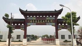 武汉福齐赛鸽俱乐部