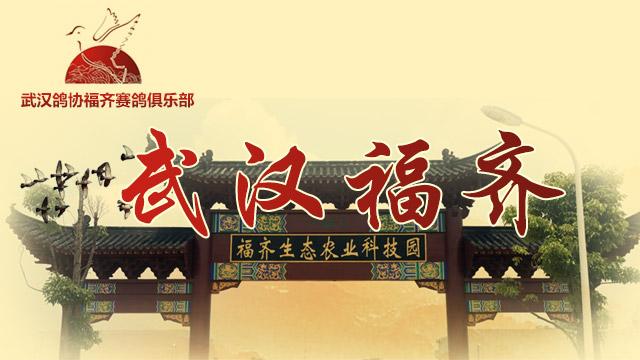 福齐睿翔赛鸽村
