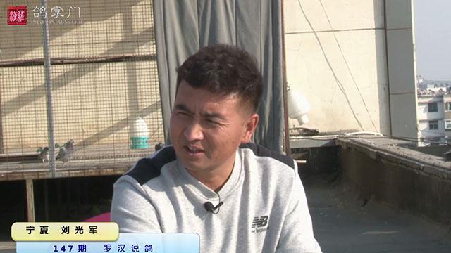 第147期《罗汉说鸽》做客宁夏刘光军鸽舍(上)