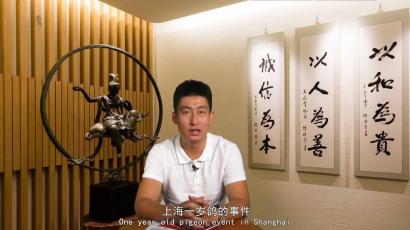 上海一岁鸽事件思考;鸽友缘何对鸽会心寒?《尊贵大杂烩》第二期