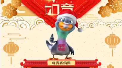 【游戏攻略】鸽界首款信鸽游戏