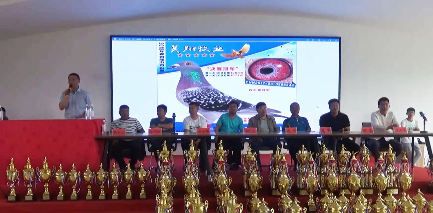 河北昊翔牧业国际公棚首届颁奖拍卖会精彩回顾
