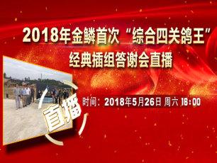 """金鳞2018年""""综合四关鸽王""""首次经典插组答谢会"""