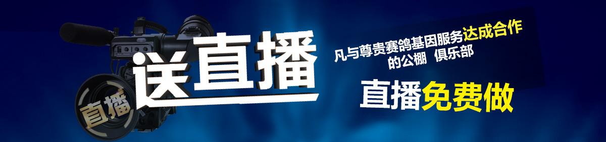杂志招商(备注:11月01日-12月31日惠翔)