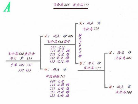 1.1.jpg