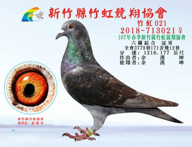 2018年新竹县冠军.jpg