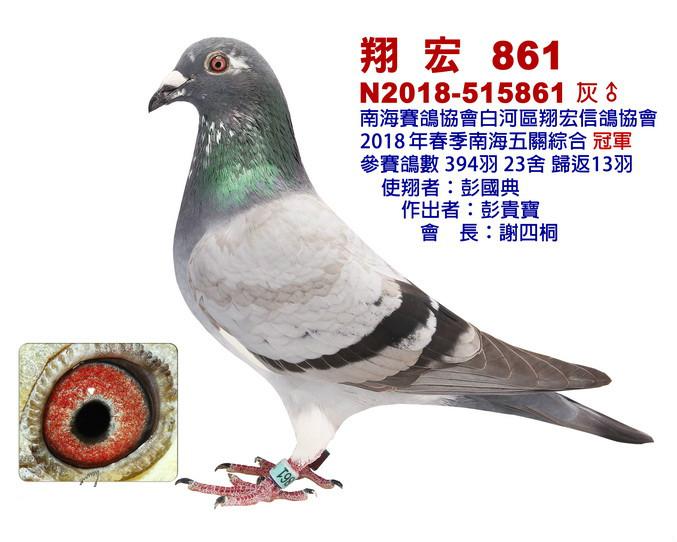 白河翔宏冠军.jpg