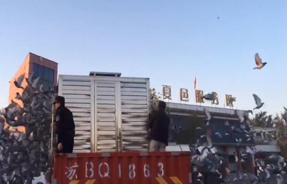 """2018""""中国杯""""职业联赛(云外水庄站)第一关精彩集锦"""