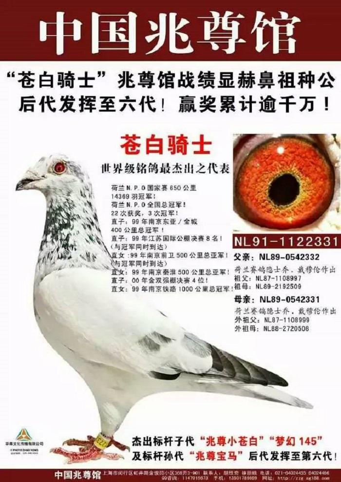 香河国良诚信鸽俱乐部,一波10连胜张帅斯托瑟打进美网女双决赛